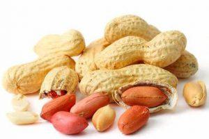 قیمت بادام زمینی خام با پوست