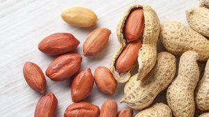 قیمت بادام زمینی خام بدون پوست