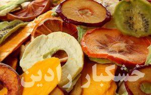 تولید میوه خشک به روش صنعتی