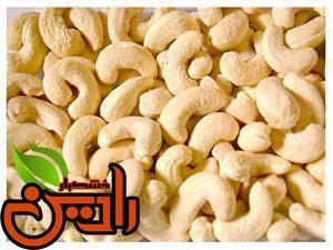 بزرگترین تولید کننده بادام هندی