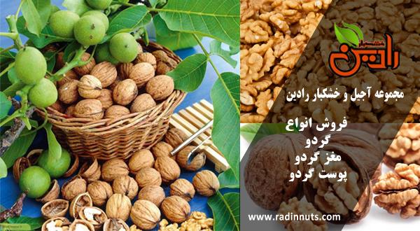 شرکت صادرات خشکبار ایران