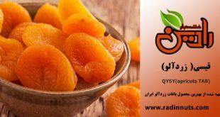 برگه زردآلو ارگانیک ایرانی